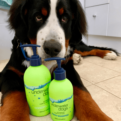 UNDERWATER DOGS – Puppy Shampoo 250mL-DoggyTopia