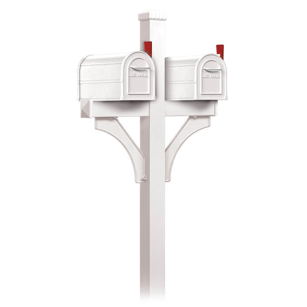 Salsbury Heavy Duty Rural Mailbox and Double Deluxe Post