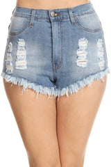 High Rise Fray Destroyed Denim Short