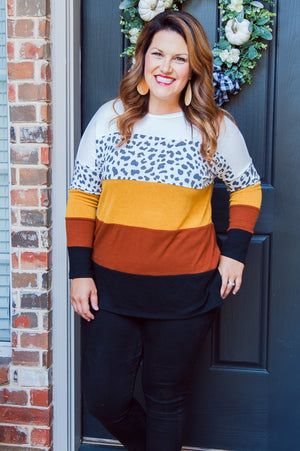 Fall Color Block Animal Print Top