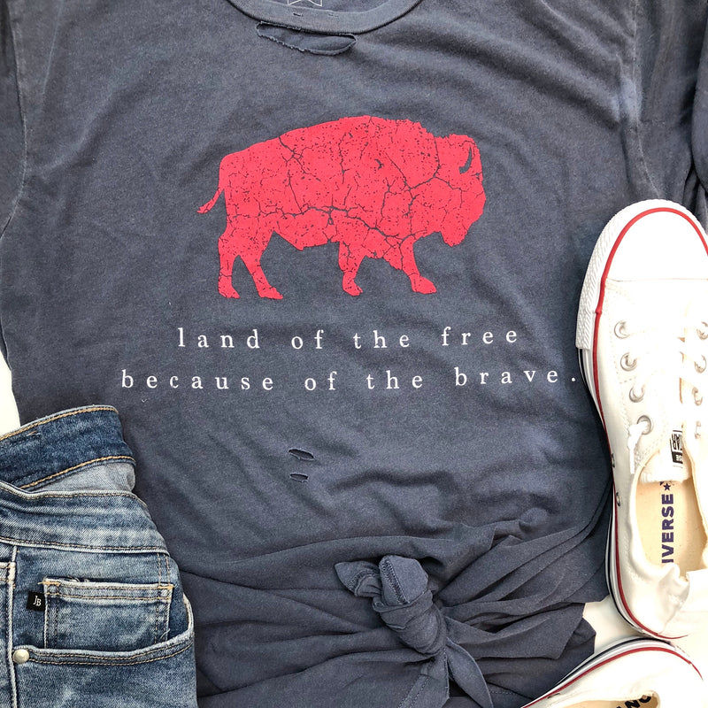 Land of the Free T-Shirt Preorder