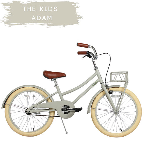 "20"" Children's Bike (4741769429075)"