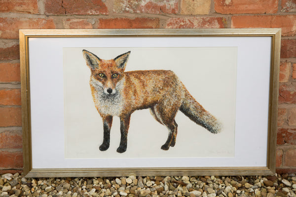 Sylvester Fox Limited Edition Print