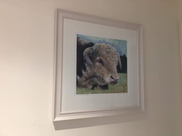 Hector Bull Limited Edition Print