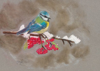 Timmy Bluetit Coaster