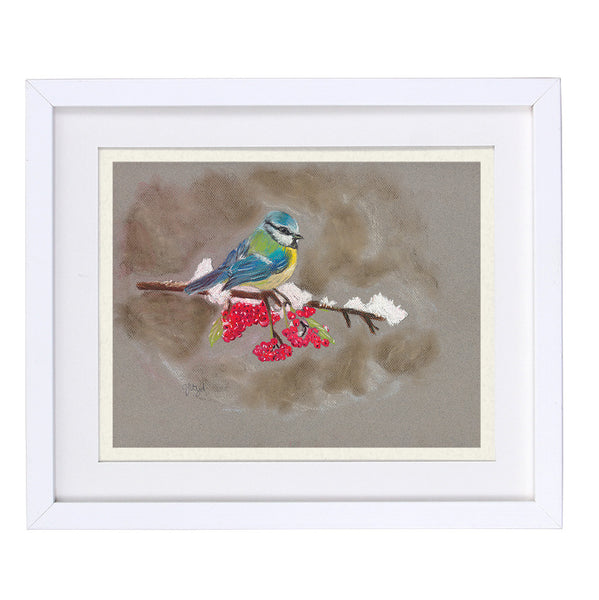 Timmy Blue Tit Framed Prints