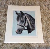 Squire Limited Edition Print