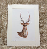 Samson Stag Limited Edition Print