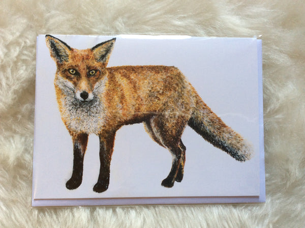 Sylvester Fox Greetings Card