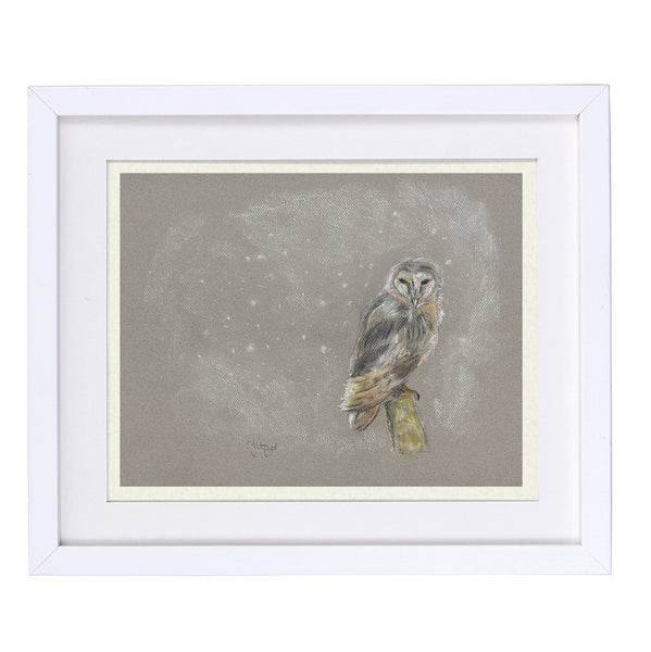 Arthur Barn Owl Framed Prints