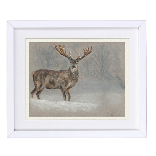 Stanley Stag Framed Prints