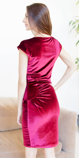 Red Fitted Velvet Dress