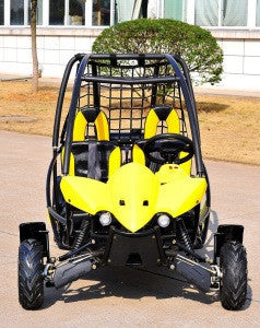 KANDI Wildcat 110CC 2-SEAT OFF-ROAD GAS GO KART, KD-110GKT-2 - Buy Online