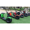 Image of PET PRIORITY THE BIGFOOT 1000W 60V Lithium Powered Electric Scooter - Buy Online
