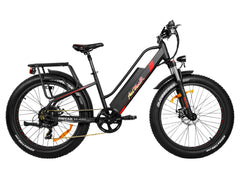 Addmotor Motan M-450 500W 48V Fat Tire Fork Suspension Electric Bike