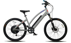 PRODECOTECH GENESIS RS  36V Rigid Frame 8 Speed Electric Bicycle - 600W - Buy Online