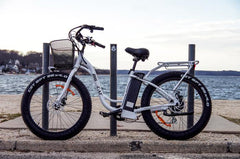 BIG CAT Long Beach Cruiser XL 500W Lithium Powered Electric Bicycle