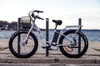 Image of BIG CAT Long Beach Cruiser XL 500W Lithium Powered Electric Bicycle - Buy Online