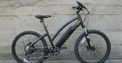 PRODECOTECH GENESIS R V5 36V 8 Speed Electric Bicycle - 300W, Rigid Frame