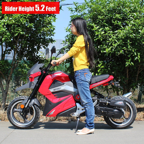 Dongfang Motor 50CC Gas Motorcycle Scooter DF50STT - Buy Online