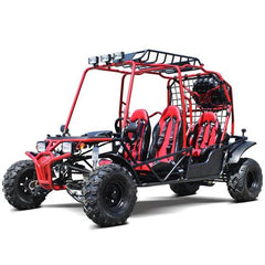 Dongfang Motor 4-Seater Off-Road Gas Go Kart DF200GHG  - Buy Online