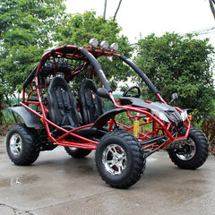 Dongfang Motor Captain 200CC Off-Road Gas Go Kart DF200GKA