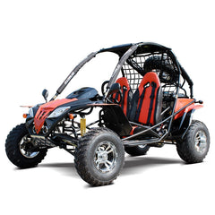 Dongfang Motor Warrior 200CC Off-Road Gas Go Kart DF200GKF
