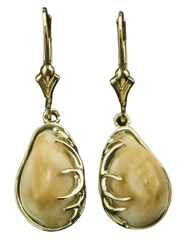 Elk Tooth Ivory Dangle Earrings With Antlers Park City Jewelers