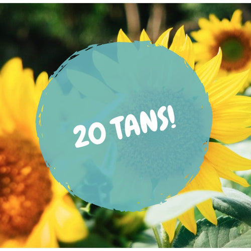20 Tans - The GyPsY Barn Boutique