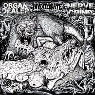 "V/A: ORGAN DEALER / NERVE GRIND / INVERTEBRATE - Split (7"" EP)"