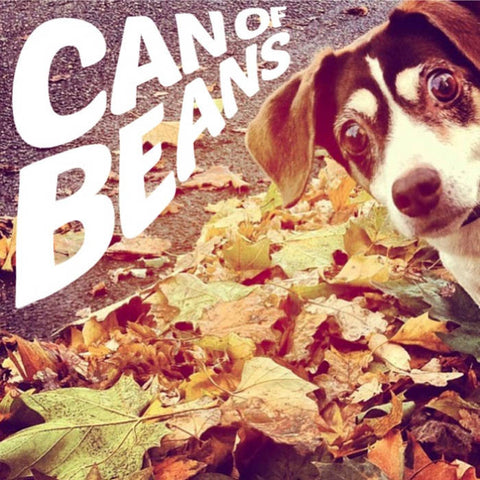 CAN OF BEANS S/T                                  LP, punk, recess ops, distro, distribution, punk distribution, wholesale, record album, vinyl, lp, Recess Records
