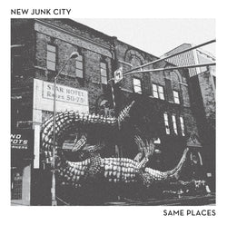 NEW JUNK CITY - Same Places (LP)