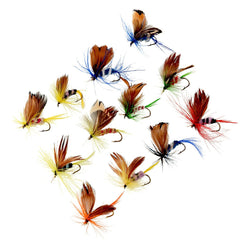 Flashy Fly Fishing Tackle 12pc Set - Wow Great Gifts