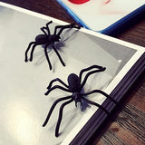 Spider Earrings - Wow Great Gifts