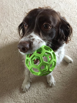 Pet Treat Ball - Wow Great Gifts