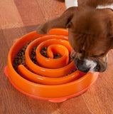 Slow Feeder Dog Bowl - Wow Great Gifts