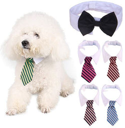 Pet White Collar Necktie - Wow Great Gifts