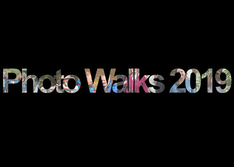 Photo Walks for 2019 graphic text
