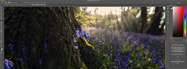 Photoshop & Lightroom Lessons