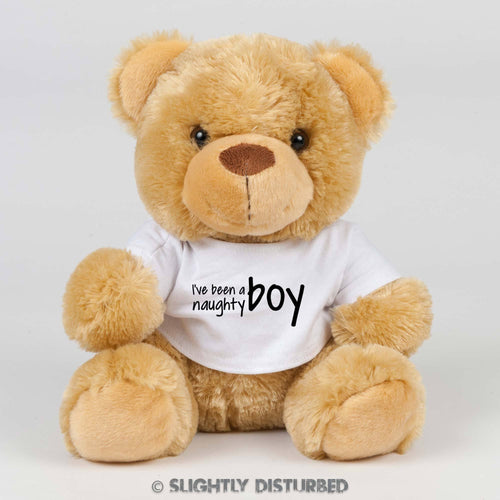 I've Been A Naughty Boy Teddy Bear - Novelty Bears - Slightly Disturbed