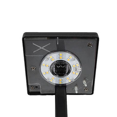 solar pathway light lets