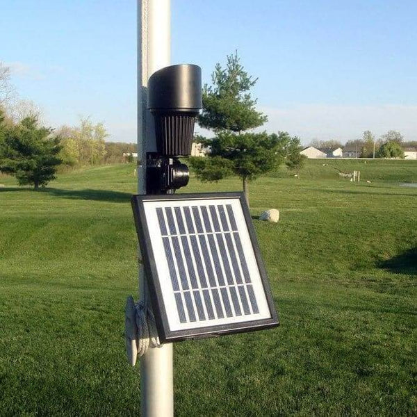 Professional Solar Flag Light Outdoor Solar Store