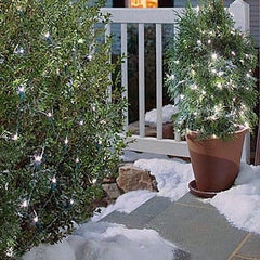 Warm White Solar Christmas Lights Net