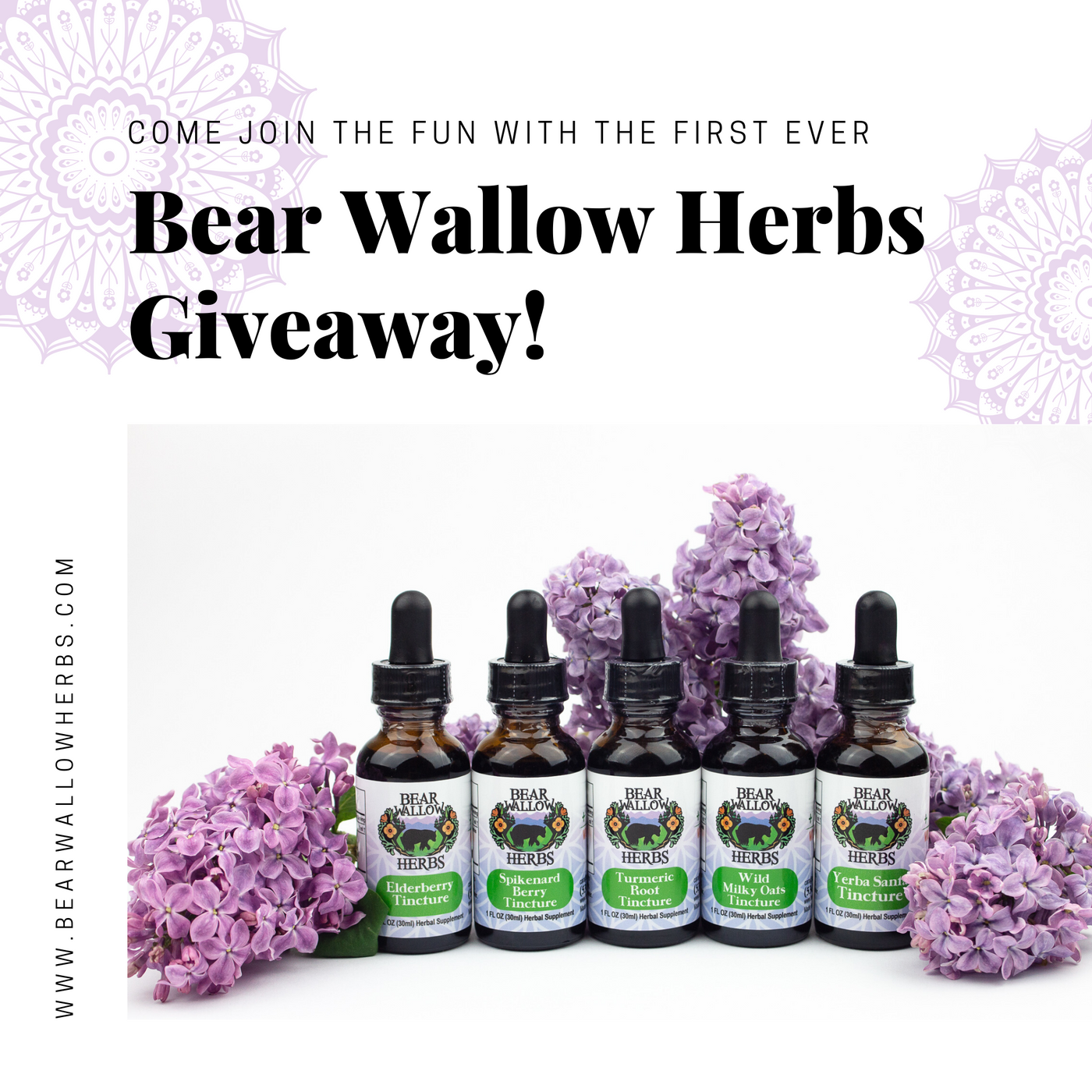 Chance to Win a FREE Herbal Gift Kit!