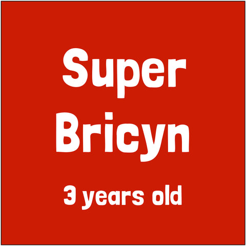 Sponsor Super Bricyn!
