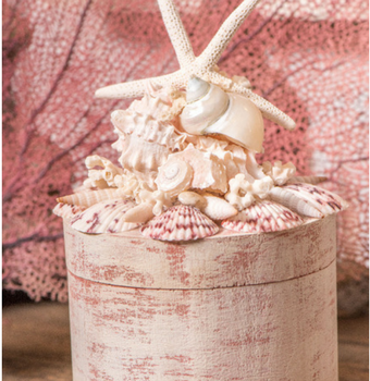 Pink Pearl Box Seashells Coastal Decor Beach House Nautical Decor
