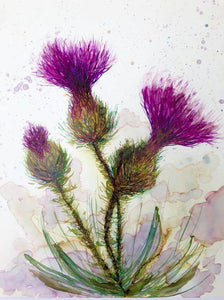 Three Thistles Painting : Art Prints and Greeting Cards