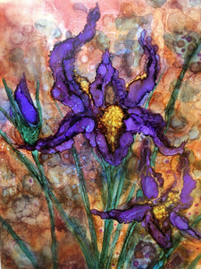 Purple Irises Prints and Cards