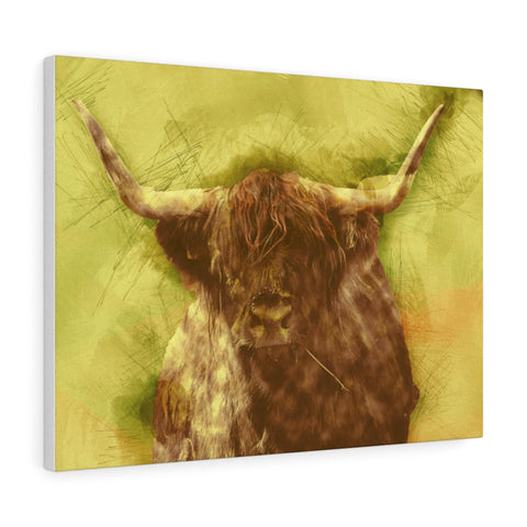 scottish angus wall art