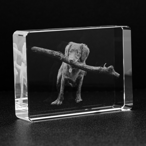 Image of Personalized Etched Photo Crystal